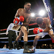 Cesar Seda fights Rogelio Casarez during a Fire Fist Boxing Promotions boxing match at the A La Carte Pavilion on Saturday, August 12 , 2017 in Tampa, Florida.  (Alex Menendez via AP)
