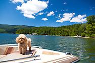 Swan Lake, Montana
