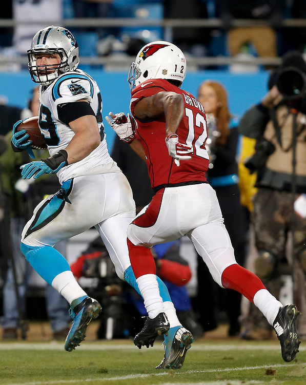 CHARLOTTE, NC - JAN 24:  Linebacker Luke Kuechly #59 of the Carolina Panthers returns and interception for a touchdown in front of wide receiver John Brown #12 of the  Arizona Cardinals in the fourth quarter during the NFC Championship game at Bank of America Stadium on January 24, 2016 in Charlotte, North Carolina.