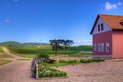 Paisagem de parreirais na Serra Gaúcha, região produtora de sucos e vinhos. FOTO: Jefferson Bernardes/Preview.com