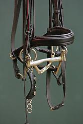 Bitten van Salinero paard van Anky Van Grunsven<br /> Stal Van Grunsven - 2004<br /> Foto © Hippo Foto
