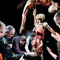 Nederland, Amsterdam , 23 april 2012..rondleiding met blinden en de bodys die echt uit vitrines worden gehaald tijdens de expositie Body Worlds van de kunstenaars Dr. Gunther von Hagens en curator Dr. Angelina Whalley in expo Zuidas..Foto:Jean-Pierre Jans