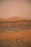 Sand storm. Camel trekking through the sand dunes of Merzouga, Morocco