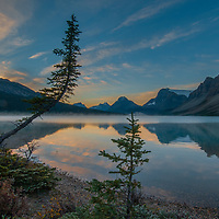 Fir trees lean over misty Bow Lake at sunrise in Banff National Park, Alberta Canada.  Behind are (L to R) Cirque Peak, Mount Andromache, Mount Hector, Bow Peak, Bow Crow Peak and Crowfoot Mountain.
