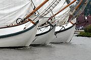 Evenals bij vorige edities van SAIL wordt er een vlootschouw gevaren door het Nederlands Varend Erfgoed dat ook ver buiten onze landsgrenzen bekend is. Deze SAIL zal de vlootschouw van het Varend Erfgoed deels varend en deels liggend worden gehouden. Een representatief deel van het Varend Erfgoed, waarbij elk scheepstype en elke behoudsorganisatie vertegenwoordigd is, zal in front-linie langs het admiraalschip, de Groene Draeck met de Prins van Oranje, varen terwijl een ander deel het admiraalschip aan weerzijden zal flankeren.<br /> <br /> <br /> <br /> On the photo: The Dutch Royal Familie ( Queen Beatrix, Prince Willem Alexander and Pieter van Vollenhoven) on there boat the Groene Draeck at the SAil 2005, a big sail event.