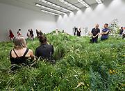 "FREESPACE - 16th Venice Architecture Biennale. Australia, ""repair""."