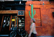 Image of an East Village wall mural at Fifth Street and Second Avenue, Manhattan, New York City, New York by Andrea Wells