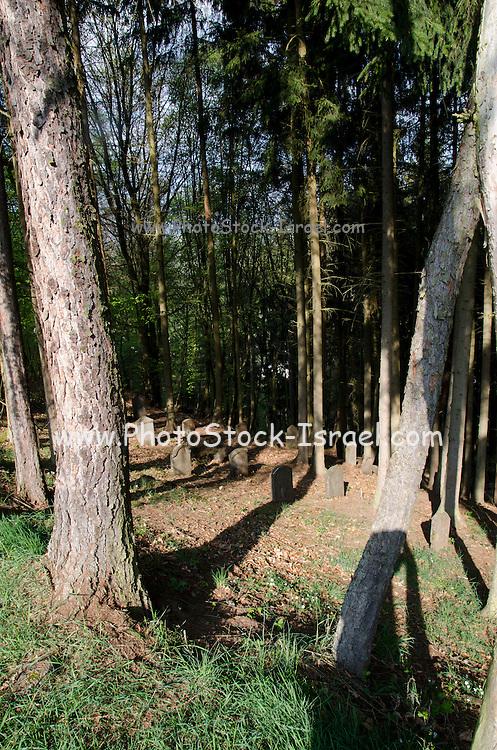 Jewish Cemetery Bueckeburg, Schaumburger Landkreis, Lower Saxony, Germany