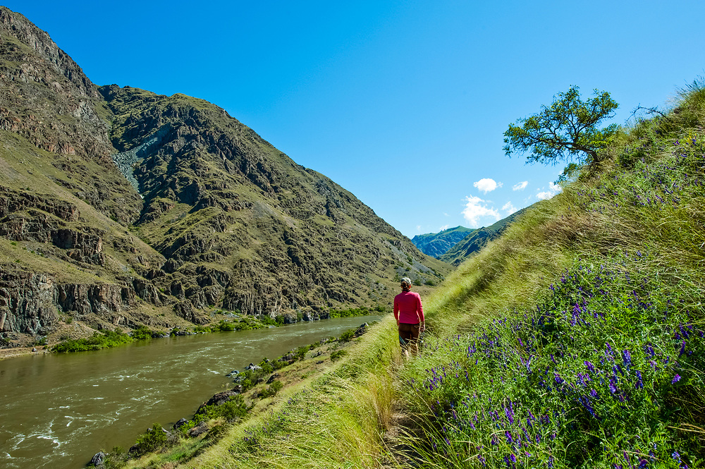 Young woman walks the Idaho side of Hells Canyon North Americas deepest gorge in springtime with the very full Snake River flowing north and the State of Oregon on the other side of river. Licensing and Open Edition Prints.