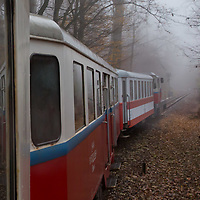 Children's Railway is seen in the fog in a forest in the Buda Hills in Budapest, Hungary on November 16, 2014. ATTILA VOLGYI