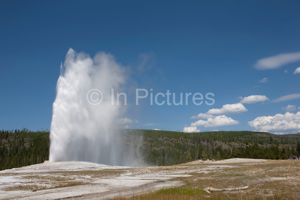 Grand old geyser of Yellowstone National Park, Wyoming, because of its frequent and predictable eruptions. The intervals between eruptions average between 45-90 minutes and the average duration is about four minutes. To predict the next eruption, its first continuous surge is timed until the final splash.