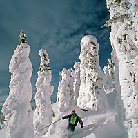 """SKIING, The Big Mountain, Whitefish, Montana. Scott Sederstrom (MR) skis powder between """"snow ghosts"""" above Hellroaring Canyon."""