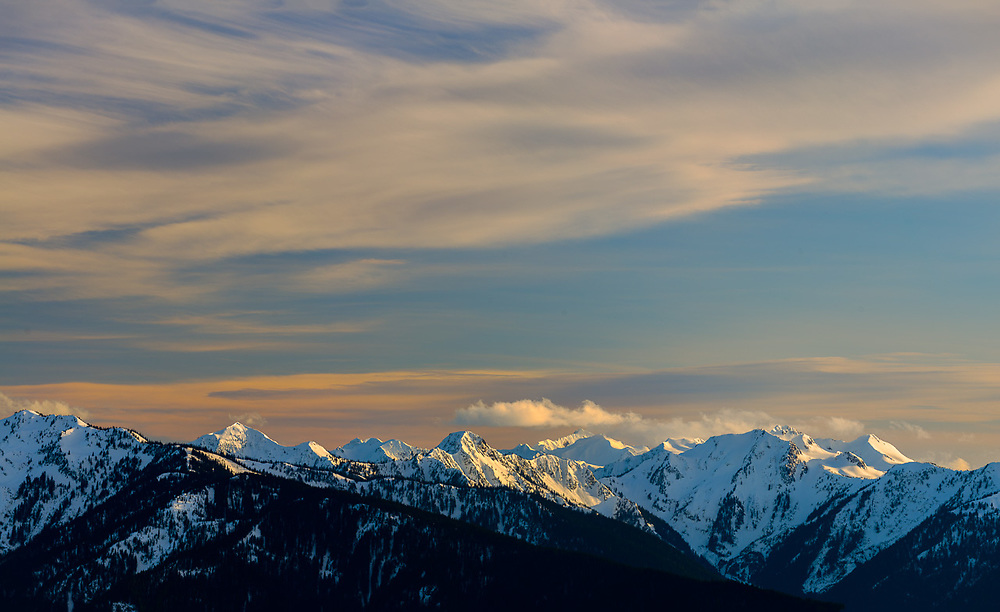 Panorama of Olympic Mountains, Elwha River headwaters, afternoon light, March, view from Hurricane Ridge, Olympic National Park, Washington, USA