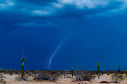 14 AUGUST 2003 - AJO, ARIZONA:  Lightning near a US Border Patrol forward operating camp in the Organ Pipe National Monument, southwest of Ajo, AZ.   PHOTO BY JACK KURTZ