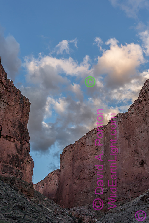 Tall cliffs of Saddle Canyon at the juction with the Grand Canyon, © David A. Ponton