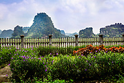 Flowers in front of a fence with lime stone rock fomrations and water buffalos in the water.