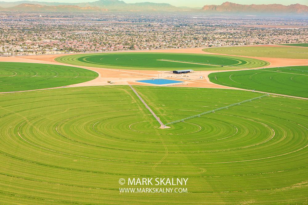 Corporate Photography  <br /> by Mark Skalny 1-888-658-3686  <br /> www.markskalny.com<br /> #MSP1207