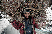Portrait of a Gypsy man carrying firewood in Kashmir Province, India