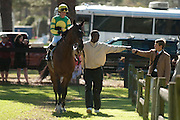 2  April, 2011:  Sunshine Number's trainer Arch Kingsley Jr. (right) fist bumps his groom Hawkeye before the Grade III Carolina Cup.