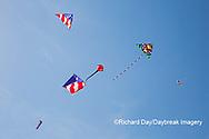 63495-02704 Kites flying at Flagler Beach Flagler Beach, FL
