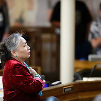 072114  Adron Gardner/Independent<br /> <br /> Navajo Nation Council Delegate Katherine Benally rises for the pledge of allegiance to start the summer session of the Navajo Nation Tribal Council in Window Rock Monday.