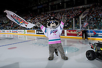 KELOWNA, CANADA - FEBRUARY 10: Kelowna Rockets' mascot Rocky Racoon stands on the ice at the start of the game against the Vancouver Giants on February 10, 2017 at Prospera Place in Kelowna, British Columbia, Canada.  (Photo by Marissa Baecker/Shoot the Breeze)  *** Local Caption ***