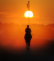 After a strong lead up campaign New Zealand raider Red Ruler was one of the fancies going into the 2008 Caulfield Cup. Here the four year old gelding is given his early morning trackwork in heavy mist by jockey Corey Brown as they head into a magnificent cup-eve sunrise about to have a canter.<br /> <br /> This image was heavily under exposed so the sun and the rich red sky was not blown out.<br /> No burning or dodging has taken place underneath the horse. When there is a certain amount of particles in the atmosphere, the spectrum of light is separated into more prominent and distinct bands of colour and contrast than would normally be seen. This effect, combined with the colours of the sunrise make the scene so interesting.