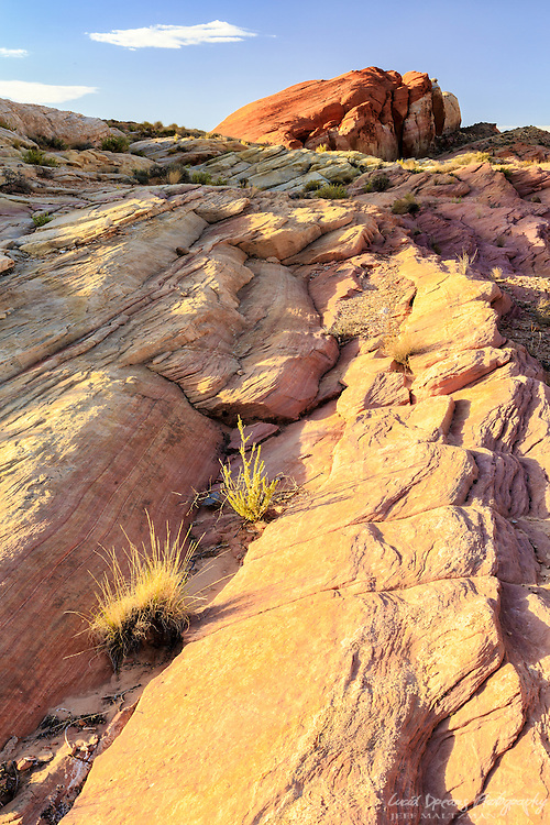 Colors and patterns in Valley of Fire State, Park, Nevada