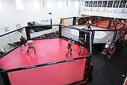 Fighters spar at Jackson Wink MMA in Albuquerque, New Mexico on June 9, 2016.