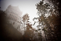 The historic Neuschwanstein Castle and the surrounding forest near Fussen, Germany