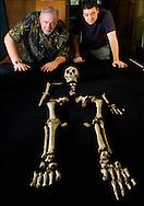 "Dr. William Jungers and Matthew Tocheri admire ""LB1"", the type specimen skeleton of Homo floresiensis, a.k.a., the Flores hobbit."