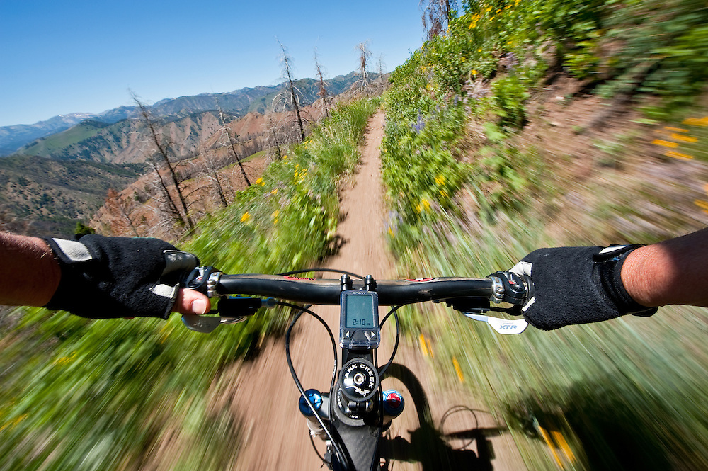 Mountain biker flies down Sun Valleys Baldy Mountain trail system creating a motion blur through shutter and bike speed MR. Licensing and Open Edition Prints.