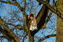 Harefield, UK. 21 January, 2020. An activist lying in a hammock suspended high up in a tree at the Save the Colne Valley wildlife protection camp gives a victory sign. Activists seeking to protect ancient woodland threatened by the HS2 high-speed rail link continue to occupy both the roadside and woodland sites of the camp having retaken it from bailiffs acting on behalf of HS2 on 18th January. 108 ancient woodlands are set to be destroyed by HS2.