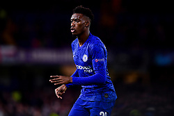 Callum Hudson-Odoi of Chelsea - Mandatory by-line: Ryan Hiscott/JMP - 10/12/2019 - FOOTBALL - Stamford Bridge - London, England - Chelsea v Lille - UEFA Champions League group stage
