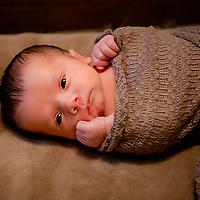 { Barrett ~ Newborn }