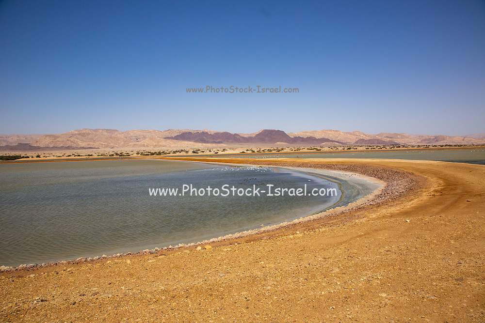 The salt pool near Eilat, Israel