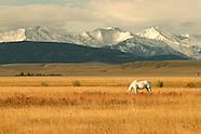 Western Sustainability Exchange/Grasslands