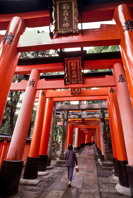 Visitor walks beneath torii (gateways) at Fushimi Inari-taisha (shrine), Kyoto, Japan