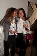 """RIGHT: MAGDALENA KRUSZEWSKA  ÒFly To BakuÓ Contemporary Art from Azerbaijan, Phillips de Pury. Howick Place, London. 17 January 2012<br /> RIGHT: MAGDALENA KRUSZEWSKA  """"Fly To Baku"""" Contemporary Art from Azerbaijan, Phillips de Pury. Howick Place, London. 17 January 2012"""