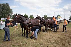 Chardon Ijsbrand, NED<br /> CHIO Aken 2017<br /> © Hippo Foto - Sharon Vandeput<br /> 22/07/17