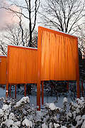 Central Park. New York, New York. United States..February 25th 2005..Art project The Gates by Christo and Jeanne Claude..7503 gates, 16,4 feet high, on 22 miles in Central park, $ 21 millions, 750 employees.
