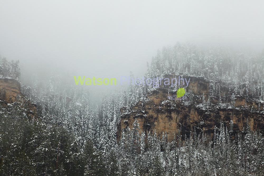 Winter Descent