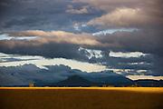 The landscape at Uruyen in Canaima National Park, seen at sunset, Venezuela
