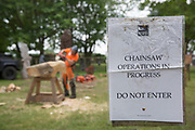 A chainsaw woodwork display at the annual Suffolk Show on the 29th May 2019 in Ipswich in the United Kingdom. The Suffolk Show is an annual show that takes place in Trinity Park, Ipswich in the English county of Suffolk. It is organised by the Suffolk Agricultural Association.
