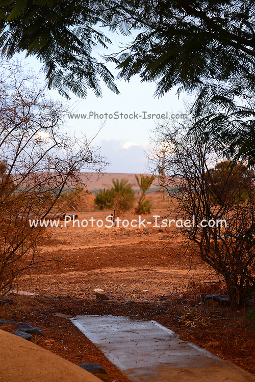 Red Landscape photographed in Israel at dawn