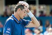 USA's John Isner reacts during his men's singles final match with Argentina's Juan Martin Del Potro at the Citi Open ATP tennis tournament in Washington, DC, USA, 4 Aug 2013. Del Potro won the final 3-6, 6-1, 6-2.