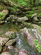 Cornwall, New York - A view of Baby Brook on the Barton Swamp Trail on Schunnemunk Mountain on May 28, 2018.