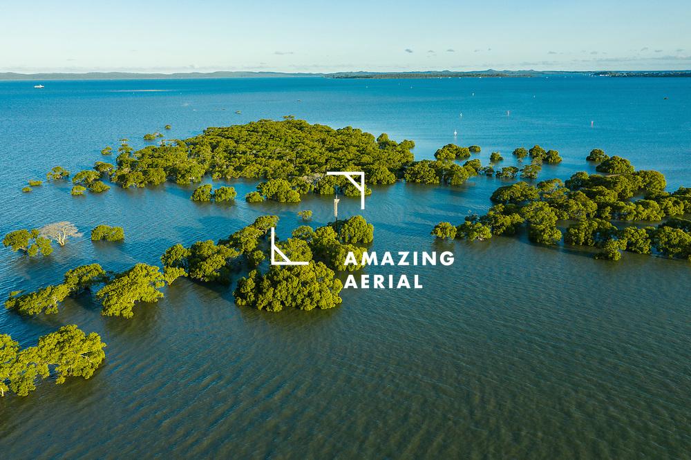 Aerial view of mangroves on Cassim Island, Moreton Bay, Cleveland, Redlands, Brisbane, Queensland, Australia.