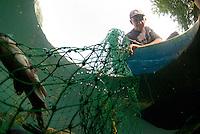Fish in fisherman's net under water, Lake Skadar, Montenegro,