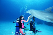 trainer and guests with bottlenose dolphin, Tursiops truncatus, at UNEXSO's The Dolphin Experience, off Freeport, Grand Bahama Island, Bahamas ( Western Atlantic Ocean )